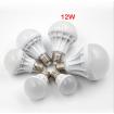 Ampoule DEL 12W Blanc Froid